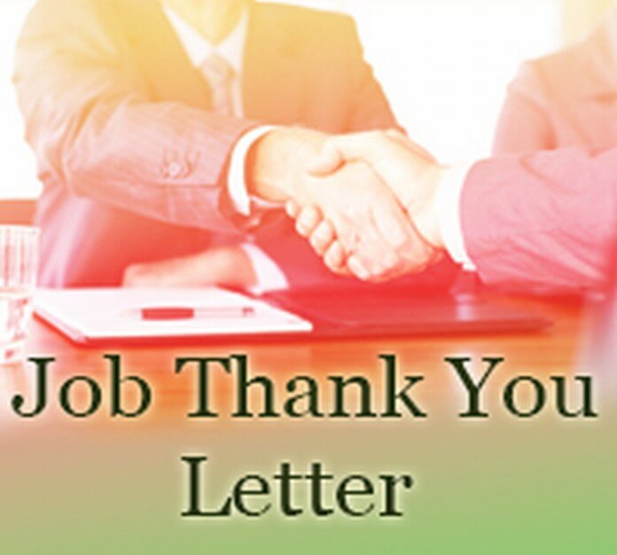job thank you letter